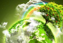 Management integrat al mediului în administrația locală